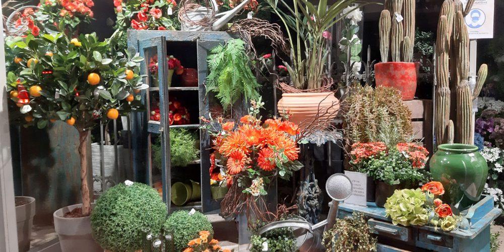 Septembre, la vitrine s'habille des couleurs de l'automne !