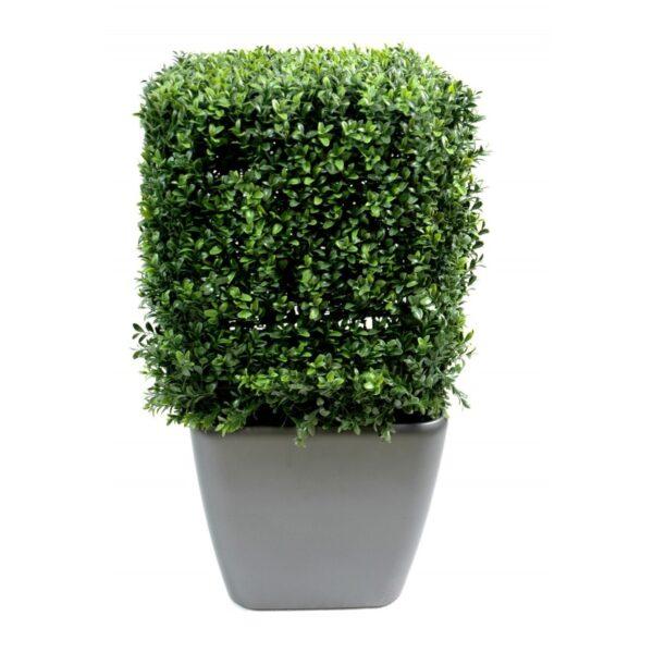 buis artificiel 10244 71 1 plant artificielle 1