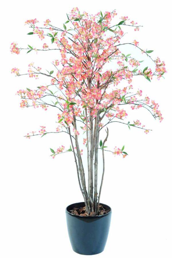 cerisier fleur new 1m60 1 1