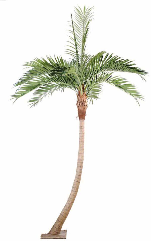 cocotier artificiel courbe 1 1