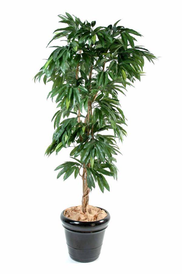 manguier artificiel 1 1