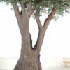 olivier artificiel new tree 7 1