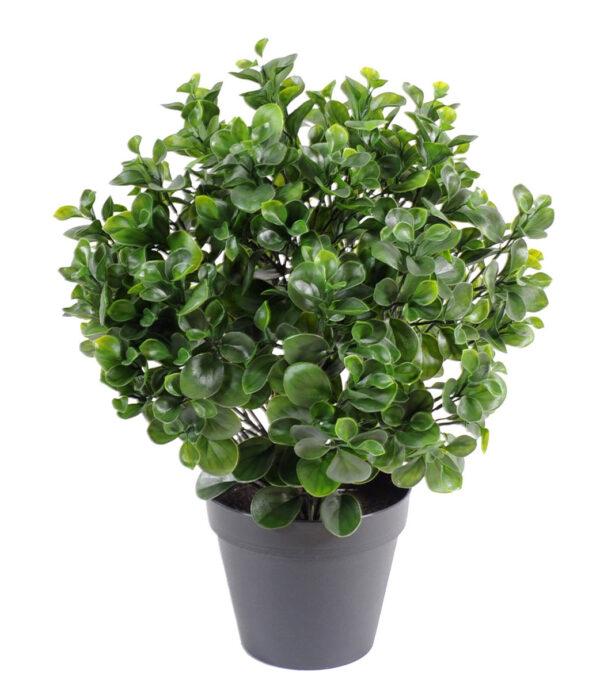 plante artificelle peperomia plast buisson 1 1 2