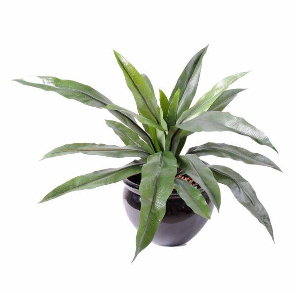 plante artificielle asplenium 1 1