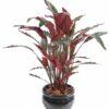 plante artificielle calathea 1 1