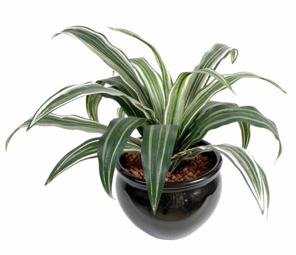 plante artificielle dracena warneki 1 1