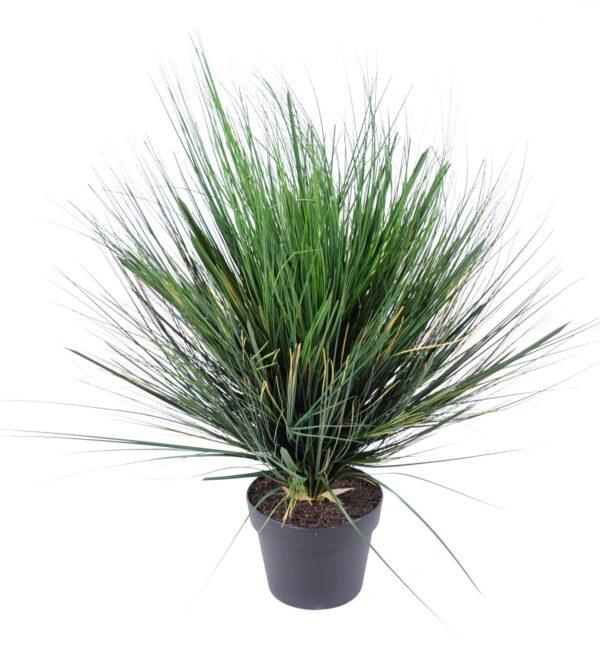 plante artificielle onion grass round 1 1