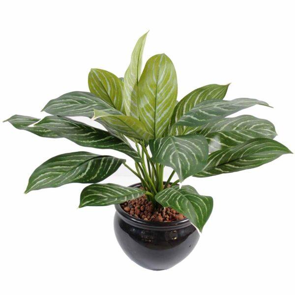 plante artificielle xanthosoma 1 1