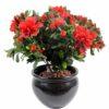 plante artificielle fleurie azalee rouge 1 1