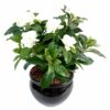 plante artificielle fleurie gardenia 1 1 1