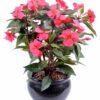 plante artificielle fleurie impatiens fuchsia 1 1