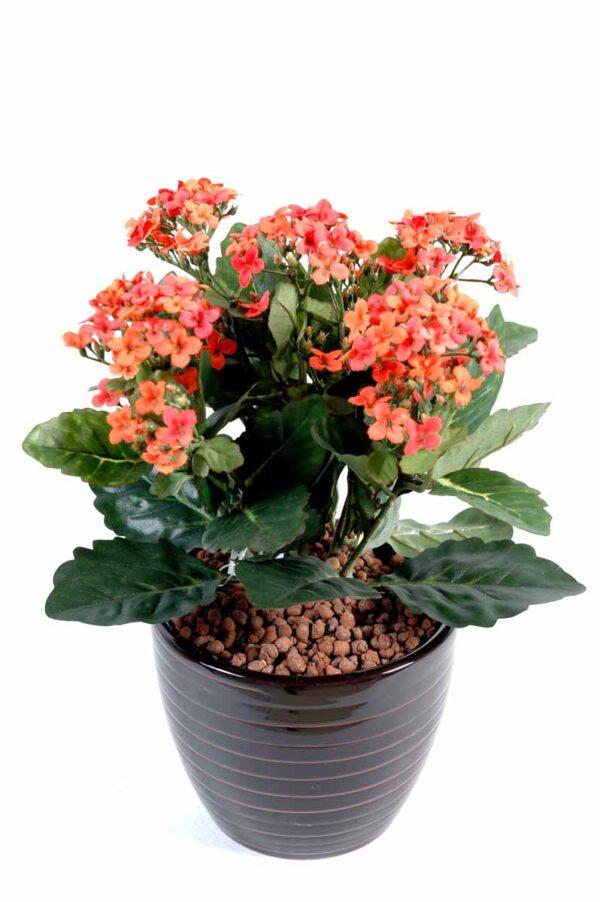 plante artificielle fleurie kalanchoe orange 1 1
