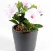 plante artificielle fleurie petunia blanc rose 1 1