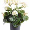 plante artificielle geranium creme 1 1