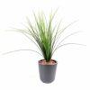 plante artificielle herbe onion grass plast 1 1