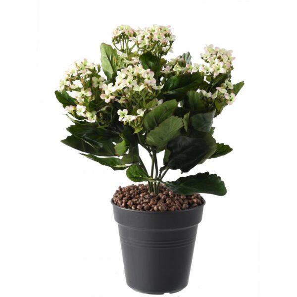 plante artificielle kalanchoe rose 1 1