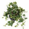 plante artificielle lierre gala panche 1 1