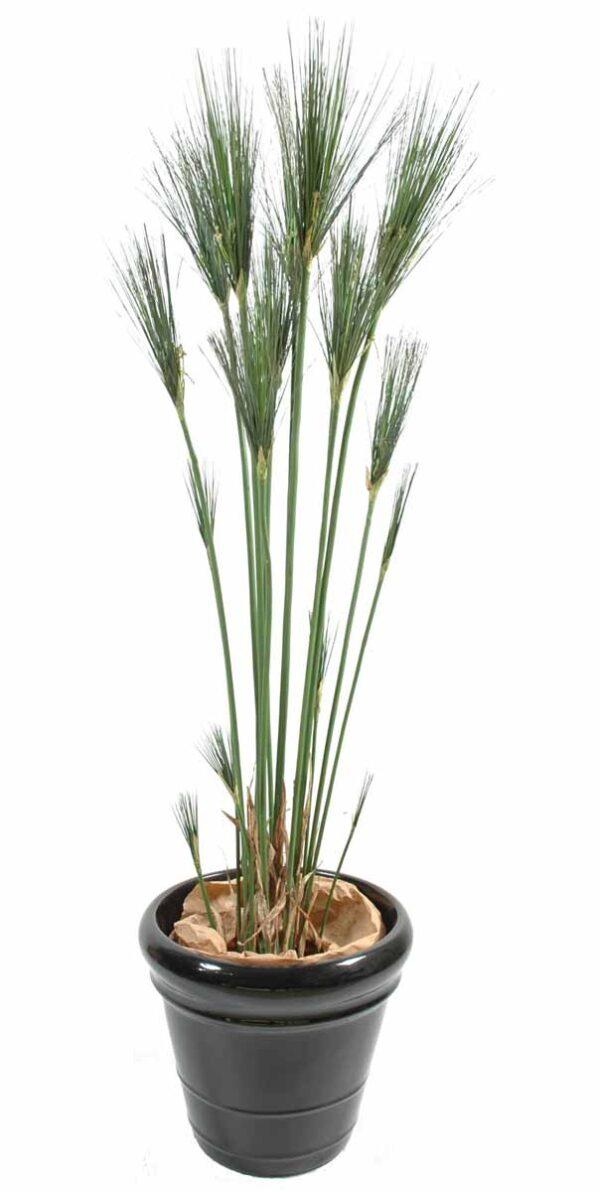 plante artificielle papyrus cyperus 1 1