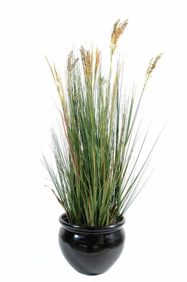 plante artificielle papyrus scirpus validus 1 1