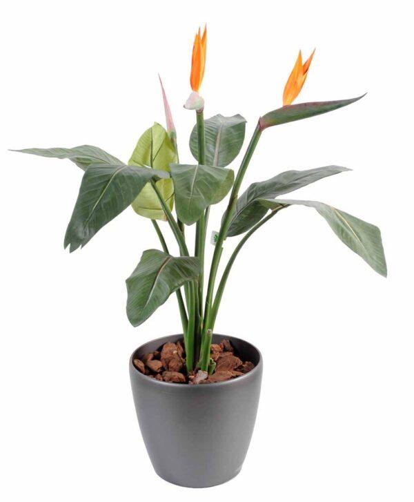 plante artificielle strelitzia 1 1