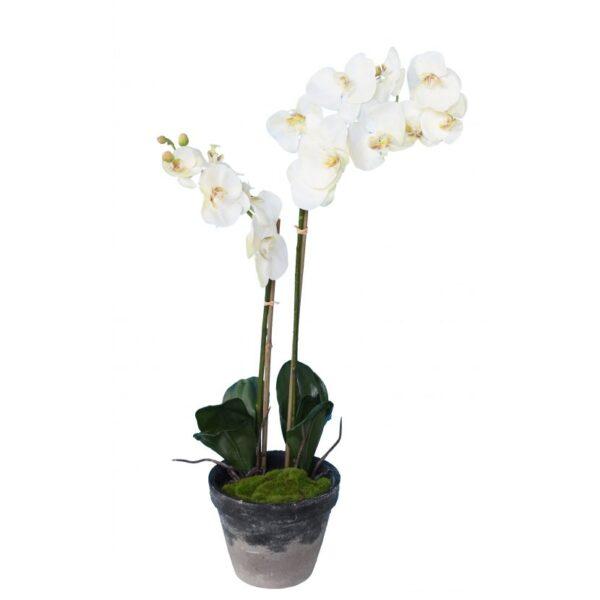 phalaenopsis orchidee artificielle 3138 58 1 1
