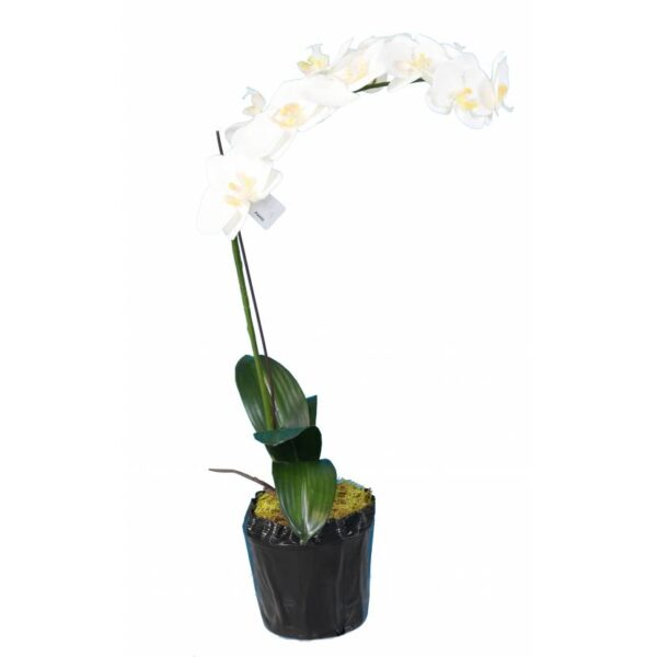 phalaenopsis orchidee artificielle 3144 58 1 1