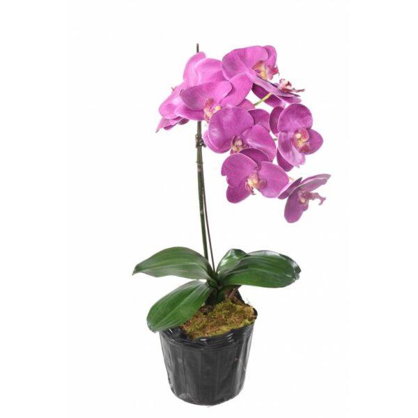 phalaenopsis orchidee artificielle 3145 24 1 1