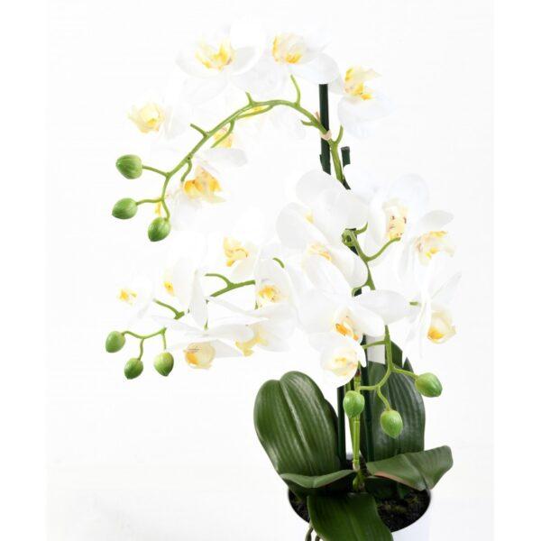 phalaenopsis orchidee artificielle 3943 58 1 1